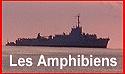 PORTAIL DES AMPHIBIENS